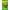 Spirulina Wafers 250 ml